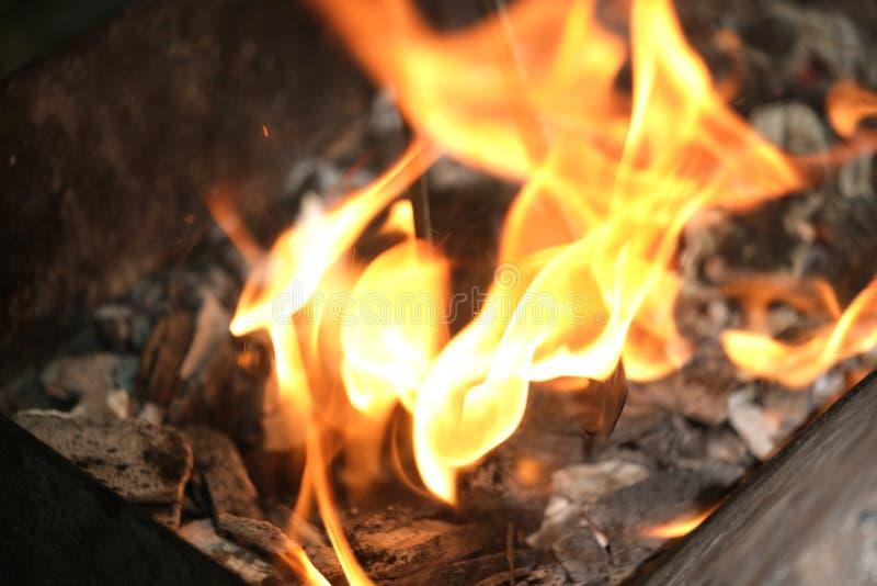 Feche acima de uma fogueira na noite fotografia de stock royalty free