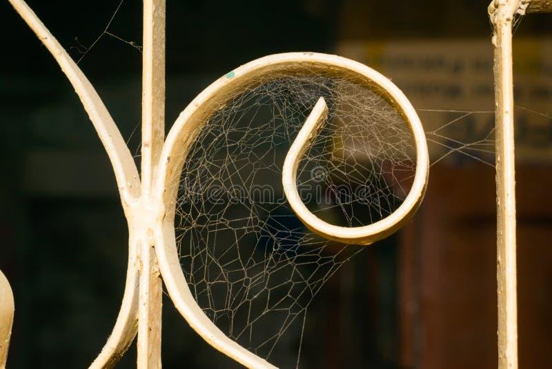 Feche acima de uma Web de aranha em uma janela com um fundo borrado escuro imagem de stock royalty free