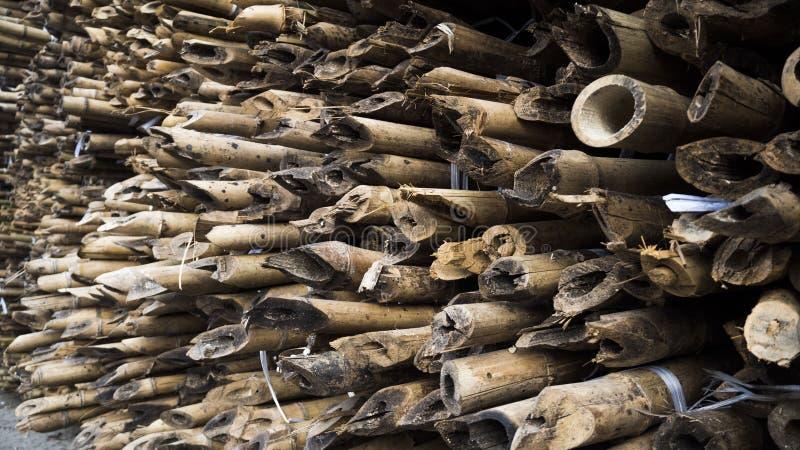 feche acima do bambu com um teste padr?o especial fotografia de stock royalty free