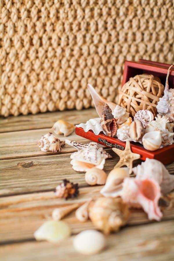 Feche acima do caixão antigo para a joia com coleção de conchas do mar diferentes na tabela de madeira fotografia de stock royalty free