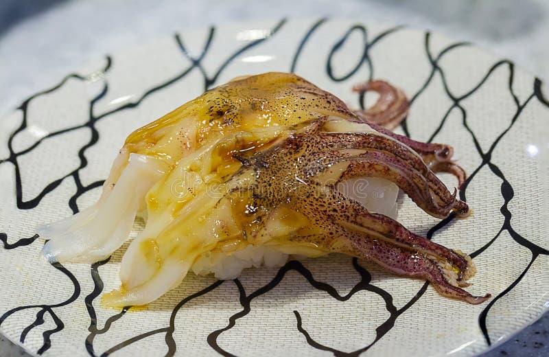 Feche acima do calamar fresco do sushi Alimento japonês para saudável Sushi do polvo imagens de stock royalty free