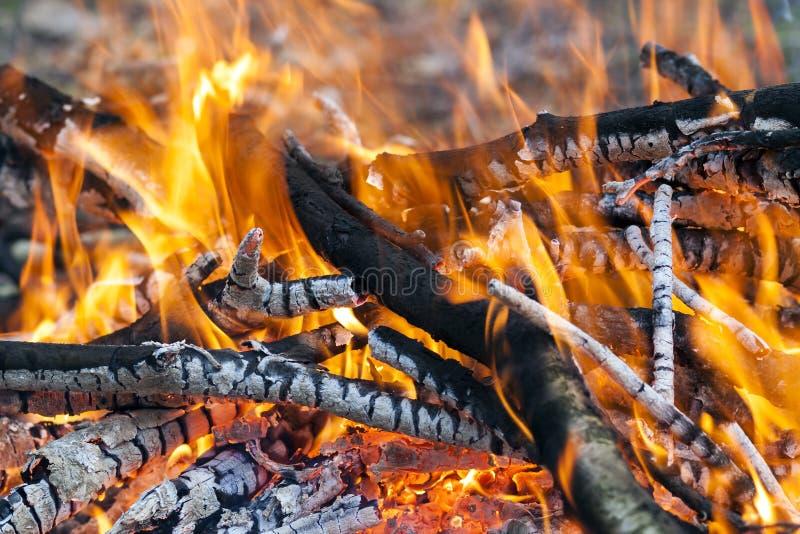 Feche acima do carvão de madeira do fogo ardente quente imagem de stock