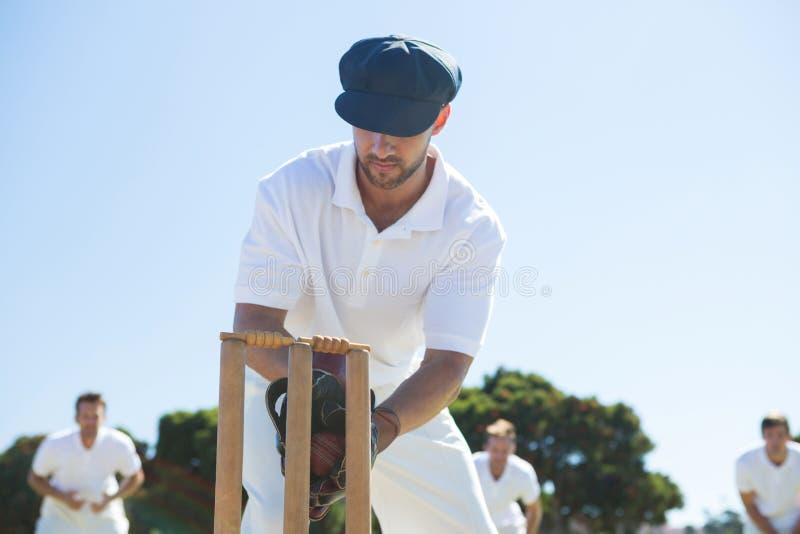 Feche acima do depositário do wicket que está por cotoes fotografia de stock royalty free
