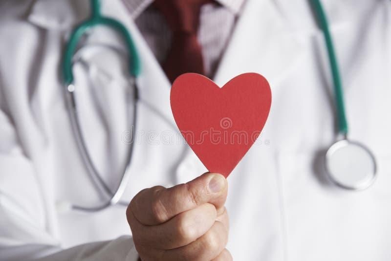Feche acima do doutor Holding Cardboard Heart imagem de stock royalty free