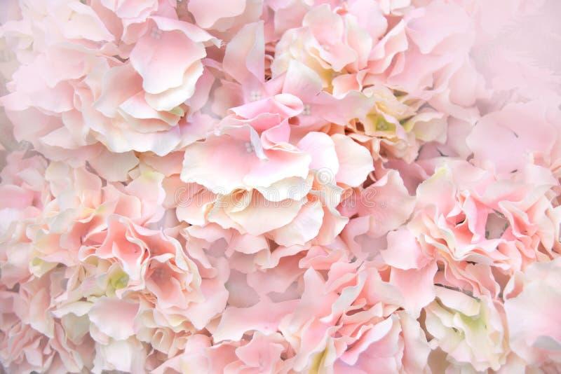 Feche acima do fundo cor-de-rosa do sumário da luz suave das flores artificiais fotografia de stock