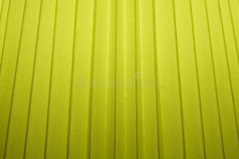 Feche acima do fundo da textura plissada verde de matéria têxtil foto de stock royalty free