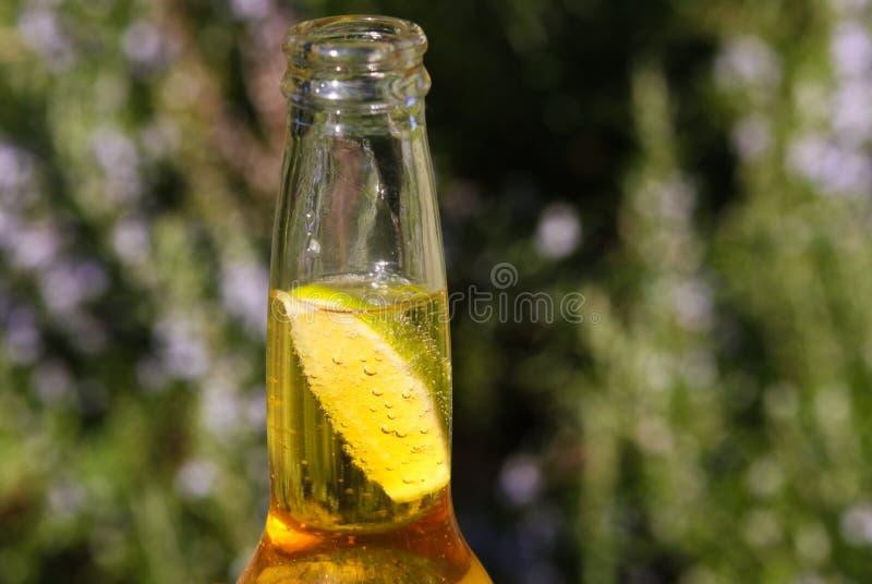 Feche acima do gargalo com cerveja amarela e da fatia de limão com fundo natural borrado verde imagens de stock