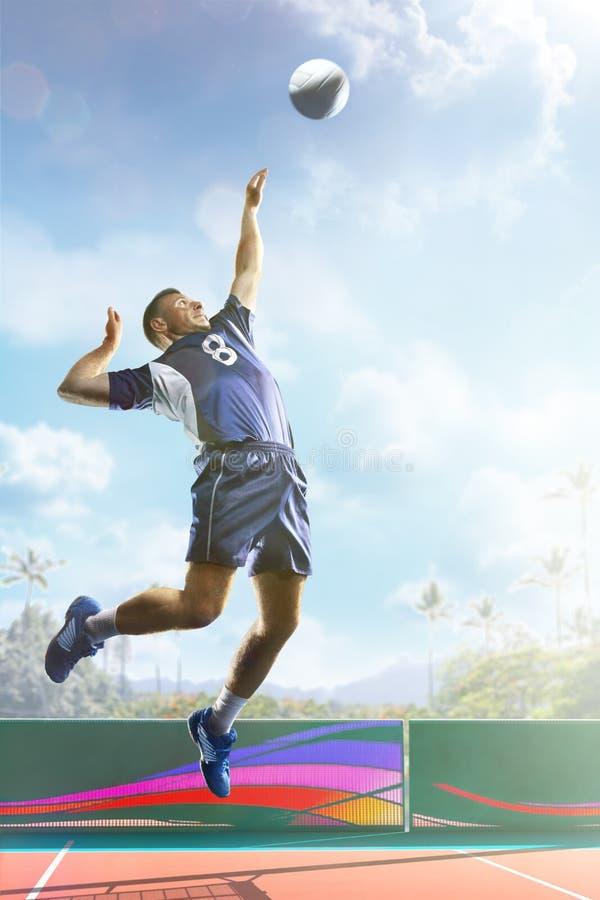 Feche acima do jogador de voleibol profissional na corte do dia ensolarado foto de stock royalty free
