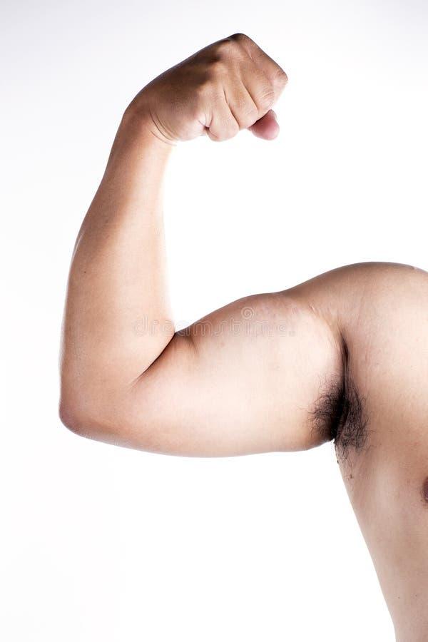 Feche acima do músculo do braço imagens de stock royalty free