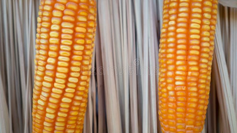 Download Feche acima do milho imagem de stock. Imagem de agricultural - 65580611