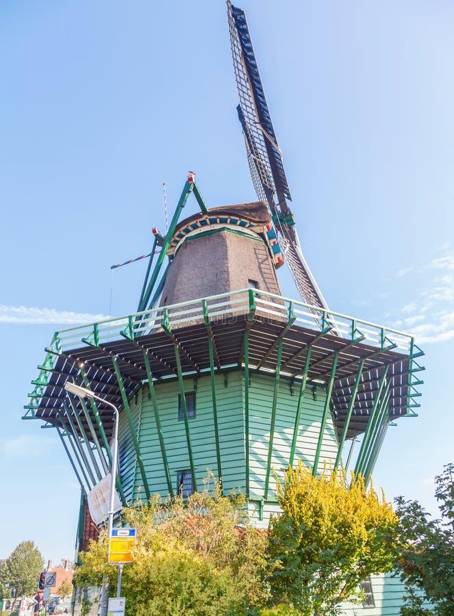 Feche acima do moinho de vento holandês histórico velho grande imagem de stock