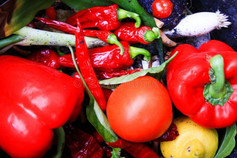 Feche acima do pimento de sino vegetal vermelho fresco, tomate, chilis no escaninho de desperdício fotos de stock