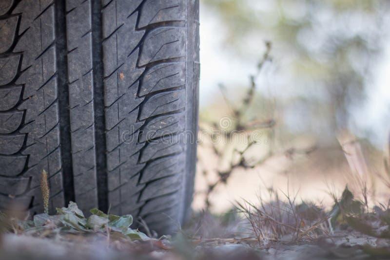 Feche acima do pneumático no deserto, safari do carro fotografia de stock