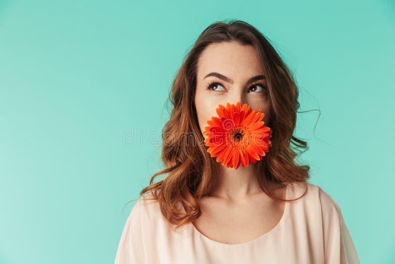 Feche acima do retrato de uma moça bonita no vestido imagem de stock royalty free