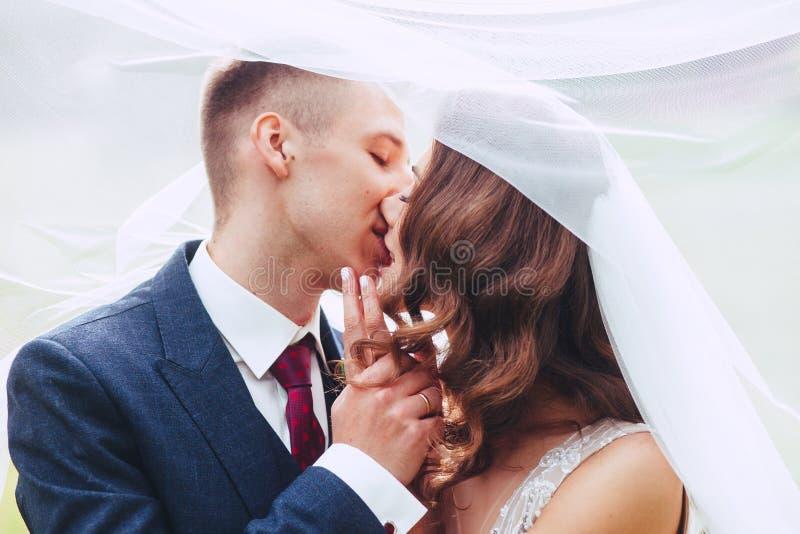 Feche acima do retrato romântico de pares bonitos do casamento sob o véu Noiva do beijo do noivo imagens de stock