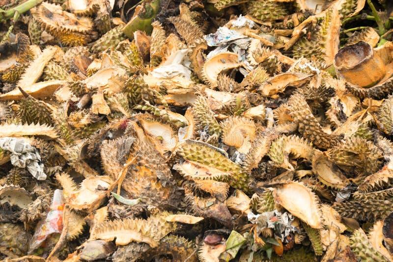 Feche acima do shell do Durian é desperdícios e foi feito para fazer o bio-adubo fotos de stock