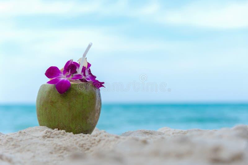 Feche acima do suco do coco na praia no dia de férias, fotos de stock royalty free