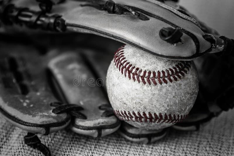 Feche acima do tiro preto e branco de um basebol e de uma luva do vintage fotos de stock royalty free