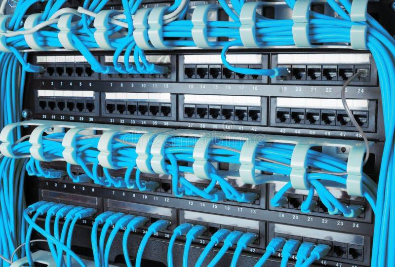 Feche acima dos cabos azuis do Internet da rede conectados ao roteador imagem de stock
