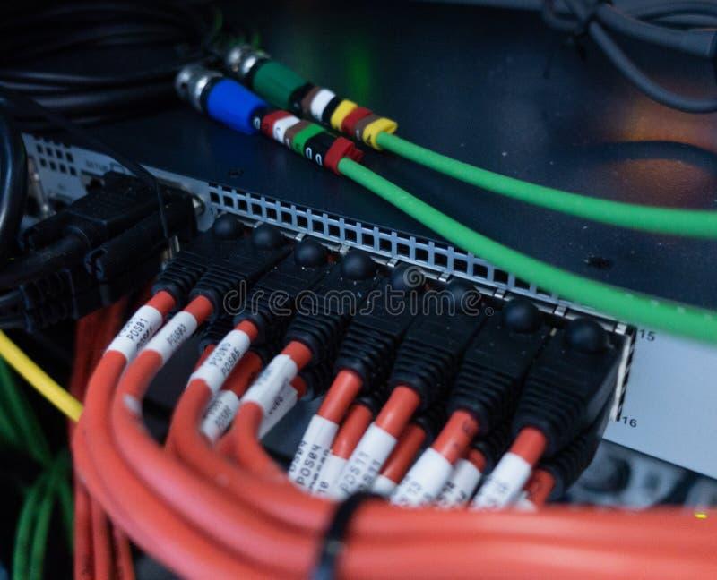 Feche acima dos cabos da rede conectados ao interruptor foto de stock