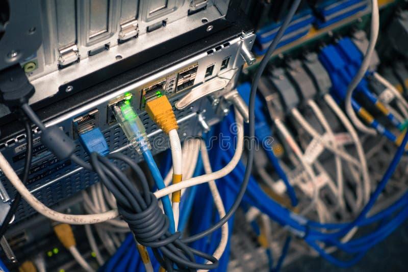 Feche acima dos cabos do Internet da rede, cabos de remendo conectados ao bl imagens de stock