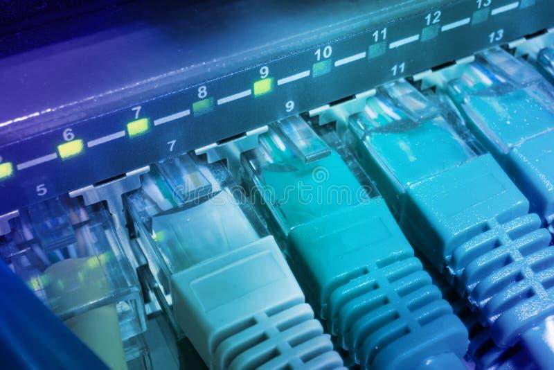Feche acima dos cabos verdes da rede conectados à incandescência do interruptor imagem de stock royalty free