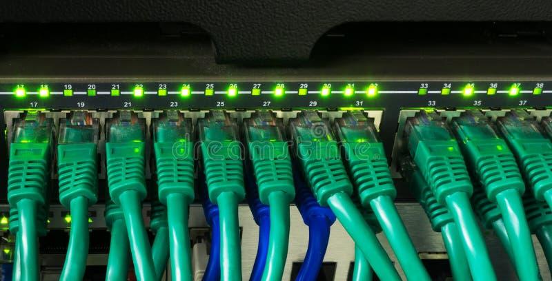 Feche acima dos cabos verdes da rede conectados à incandescência do interruptor foto de stock royalty free