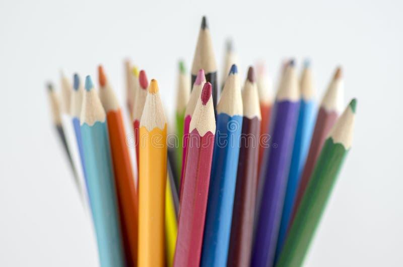 Feche acima dos lápis coloridos de madeira, grupo de pastéis dispersados, fundo isolado do branco do od imagens de stock