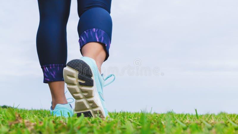 Feche acima dos tênis de corrida do atleta da mulher da aptidão ao andar no parque exterior Esporte, saudável, bem-estar e lif foto de stock royalty free
