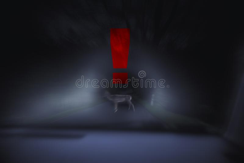 Feche acima em cervos na rua na noite, sinal do perigo, faça sinal a azul fotografia de stock royalty free