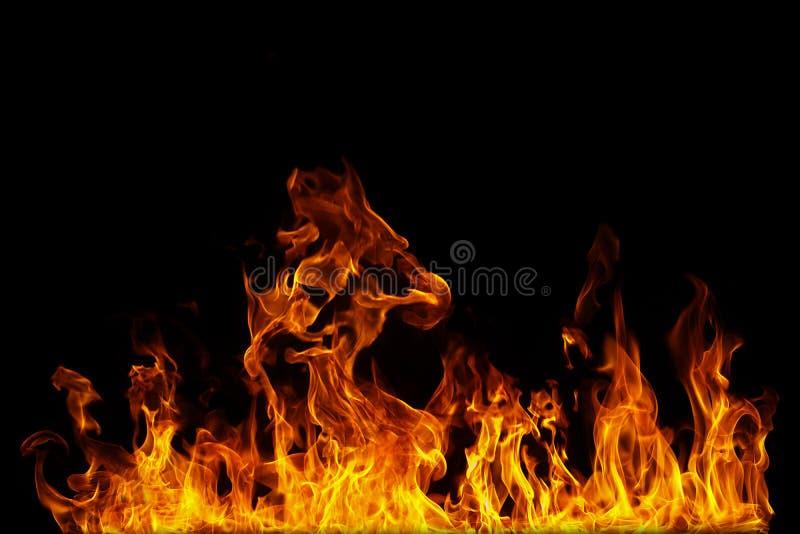 Feche acima em chamas do fogo em um fundo preto fotografia de stock royalty free