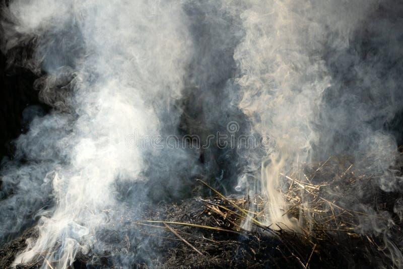 Feche acima a pilha de queimadura do fogo de palha do arroz quase completa imagens de stock royalty free