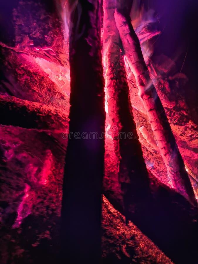 Feche a chama do fogo do fogo de marcha, movimento lento super de madeira ardente Fogueira brilhante com faíscas bonitas Flama al imagem de stock
