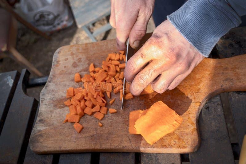 Fechem, mãos masculinas cortam cenoura com uma faca, cozinhando, piquenique fotos de stock
