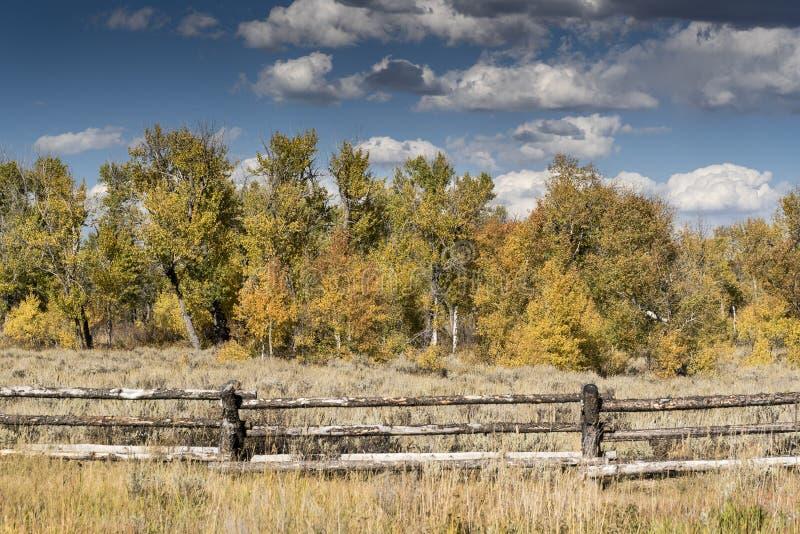 Fechten und Bäume an der Kapelle des Nationalparks Wyoming Transfigurations-Elche Tetons lizenzfreies stockfoto