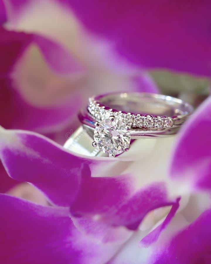 Fede nuziale del ` s della sposa e solitario di impegno in oro bianco su un letto dei petali dell'orchidea immagine stock