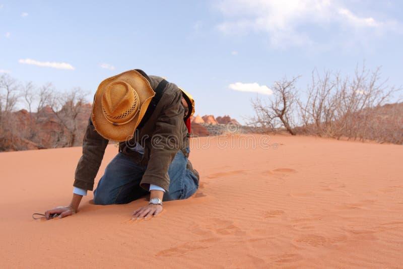 Fede perdente nel deserto fotografia stock