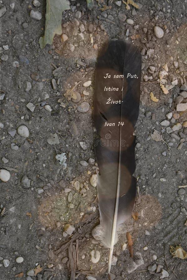 Feder auf dem Boden evangelium stockfotografie