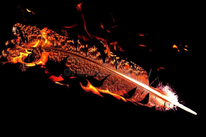 Feder auf Feuer auf schwarzem Hintergrund lizenzfreies stockbild
