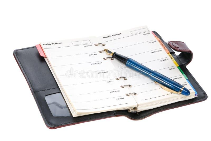 Feder und Tagebuch lizenzfreie stockfotos