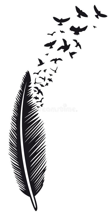Feder, Vögel lizenzfreie abbildung