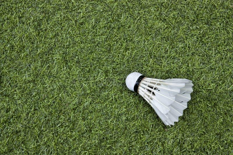 Federball auf grünem Gras stockfoto