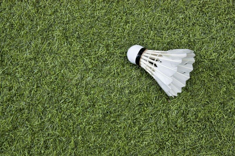 Federball auf grünem Gras stockfotografie