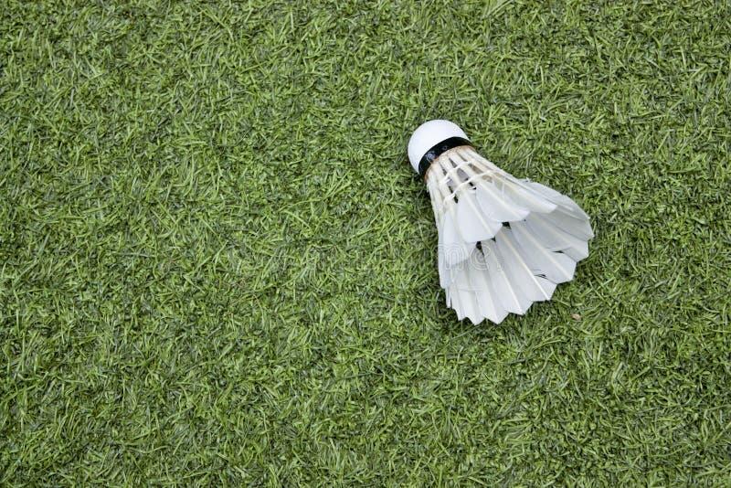 Federball auf grünem Gras lizenzfreies stockfoto