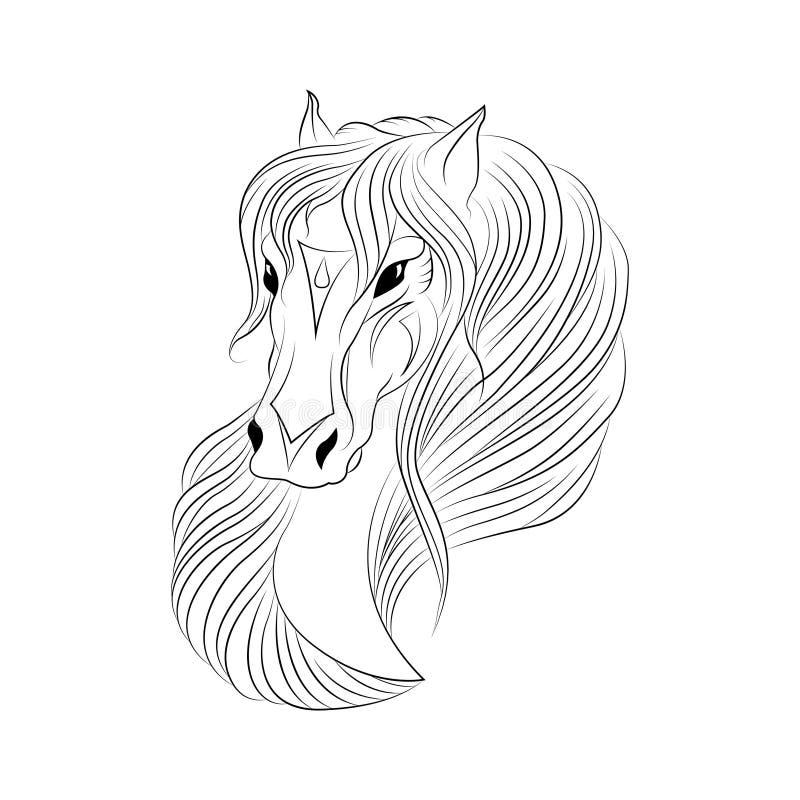 Federzeichnung eines Pferdekopfs vektor abbildung