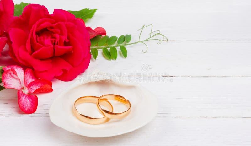 Fedi nuziali dell'oro in fiori bianchi della rosa rossa e della conchiglia su fondo di legno bianco immagini stock