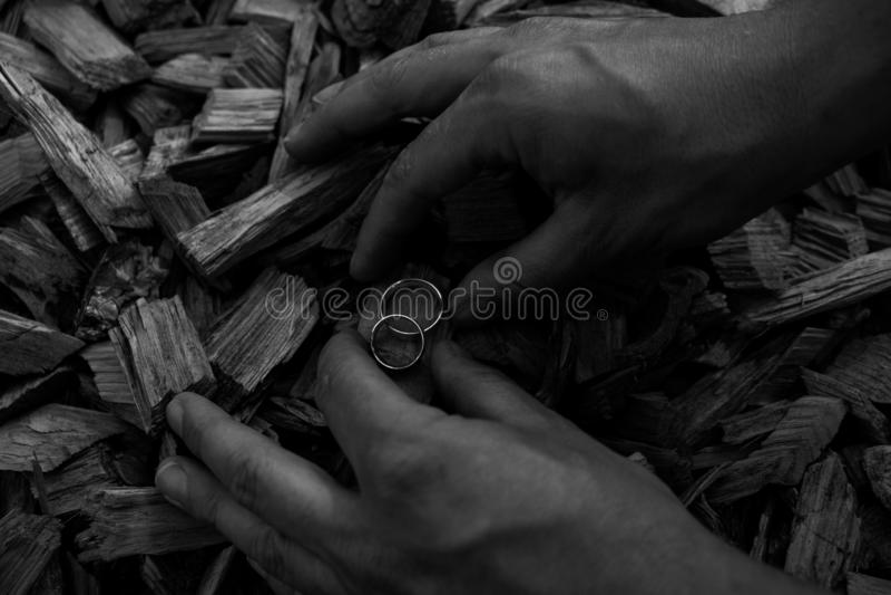 Fedi nuziali sui tagli di legno con le mani che le tengono immagini stock libere da diritti