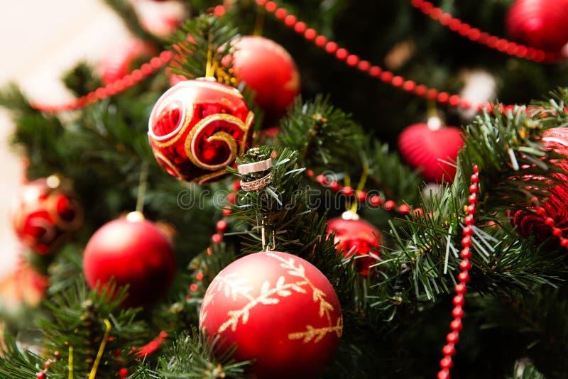 Fedi nuziali sull'albero di Natale fotografie stock libere da diritti