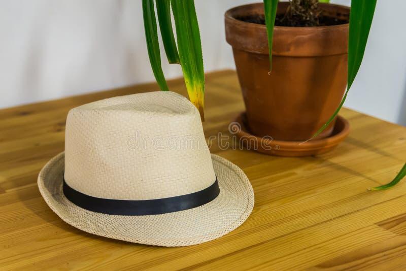 Fedora hatt på trätabellen Hipsters och stilfullt begrepp royaltyfri bild