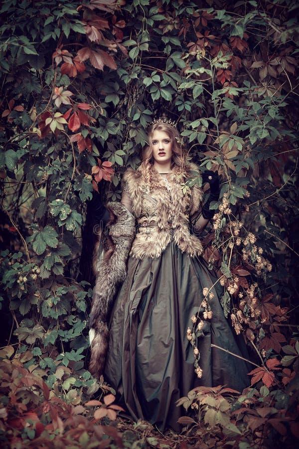 Fee in een fabelachtig de herfstbos royalty-vrije stock afbeeldingen